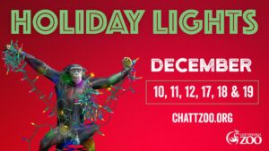 Chattanooga - Holiday Lights at the Zoo @ Chattanooga Zoo